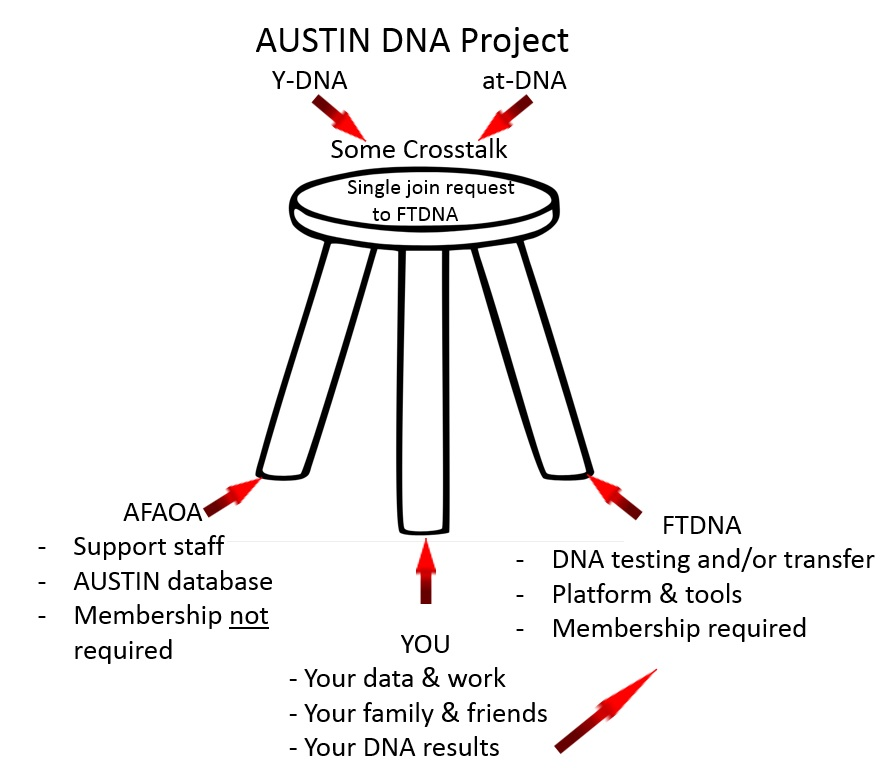 Diagram of Austin DNA Project Branches